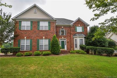 Statesville Single Family Home For Sale: 132 Fox Den Circle