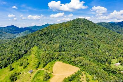 Buncombe County, Haywood County, Henderson County, Madison County Residential Lots & Land For Sale: 99999 Ox Creek Road