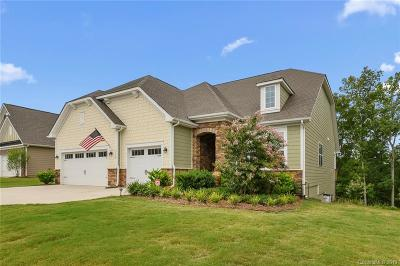 Lake Wylie Single Family Home Under Contract-Show: 9130 Blue Dasher Drive