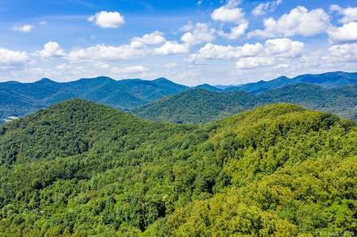 Buncombe County, Haywood County, Henderson County, Madison County Residential Lots & Land For Sale: 99999 Mundy Cove Road
