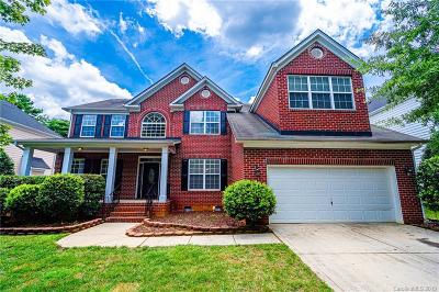 Charlotte Single Family Home For Sale: 9715 Aragorn Lane