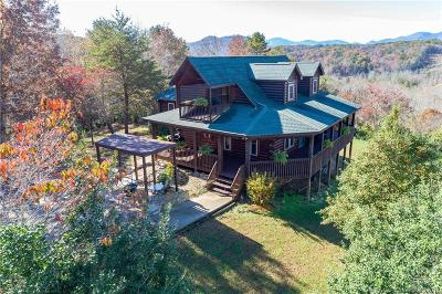 Bat Cave, Chimney Rock, Lake Lure, Gerton, Black Mountain, Mill Spring, Rutherfordton, Columbus, Tryon, Saluda, Union Mills, Hendersonville Single Family Home For Sale: 976 Freemantown Road