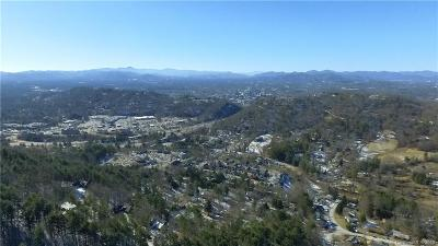 Buncombe County, Haywood County, Henderson County, Madison County Residential Lots & Land For Sale: 30 acres Chunns Cove Road