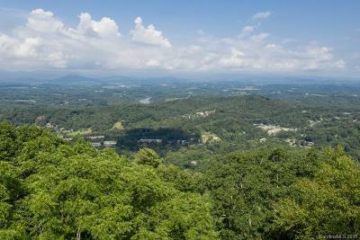 Buncombe County Residential Lots & Land For Sale: 106 Summit Tower Circle #219