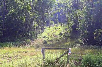 Buncombe County, Haywood County, Henderson County, Madison County Residential Lots & Land For Sale: Us 23 Highway