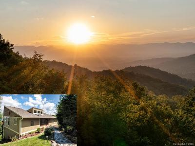 Asheville Single Family Home For Sale: 900 Rockhold Drive