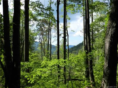 Buncombe County, Haywood County, Henderson County, Madison County Residential Lots & Land For Sale: 99999 Pegg Road
