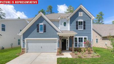 Mooresville Single Family Home For Sale: 144 Chance Road
