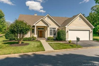 Hendersonville Single Family Home For Sale: 191 Williams Meadow Loop