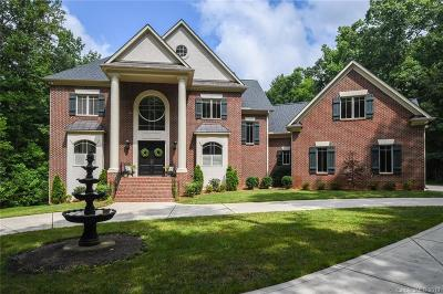 Matthews Single Family Home For Sale: 230 Chaucer Lane