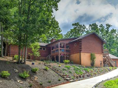 Bat Cave, Chimney Rock, Lake Lure, Gerton, Black Mountain, Mill Spring, Rutherfordton, Columbus, Tryon, Saluda, Union Mills, Hendersonville Single Family Home For Sale: 1622 Catawba Falls Parkway