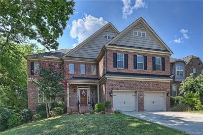 Southpark Single Family Home For Sale: 3124 Jones Ridge Drive