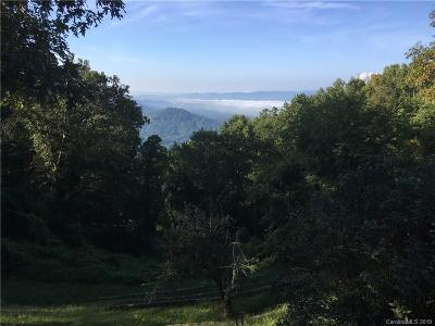 Buncombe County, Haywood County, Henderson County, Madison County Residential Lots & Land For Sale: Lot 15 Elk Mountain Scenic Highway #15