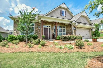 Charlotte Single Family Home For Sale: 14816 Creeks Edge Drive