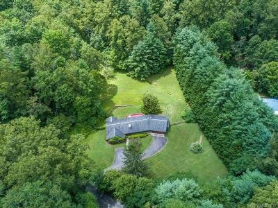 Weaverville Single Family Home For Sale: 53 Jump Cove Road