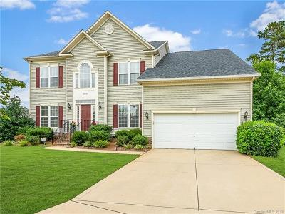 Fort Mill Single Family Home For Sale: 589 Veloce Trail