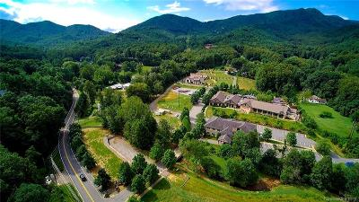 Black Mountain NC Commercial For Sale: $2,990,000