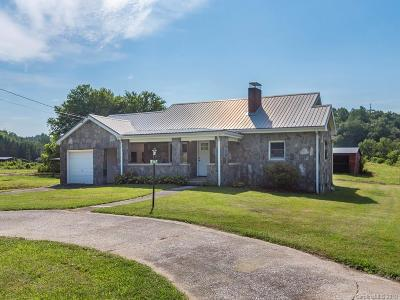 Mills River Single Family Home For Sale: 9485 Boylston Highway