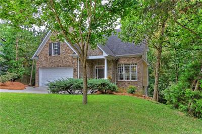 Tega Cay Single Family Home For Sale: 25078 Woodhaven Drive