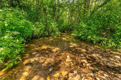 Buncombe County, Haywood County, Henderson County, Madison County Residential Lots & Land For Sale: Harper Road #6