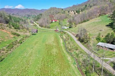 Buncombe County, Haywood County, Henderson County, Madison County Residential Lots & Land For Sale: 9999 Paint Fork Road