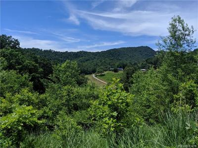 Buncombe County, Haywood County, Henderson County, Madison County Residential Lots & Land For Sale: 310 E Bee Tree Road