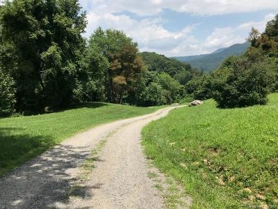 Buncombe County, Haywood County, Henderson County, Madison County Residential Lots & Land For Sale: Crymes Cove Road