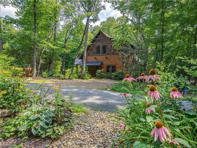 Hendersonville Single Family Home For Sale: 475 Thunder Mountain Road