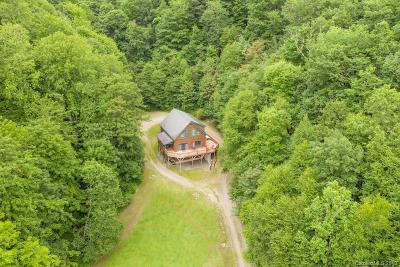 Hot Springs Single Family Home For Sale: 8020 Meadow Fork Road