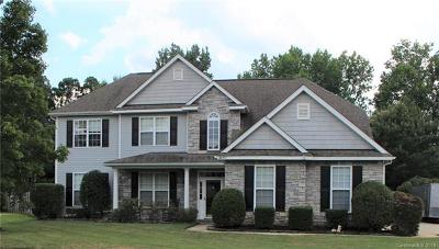 Waxhaw Single Family Home For Auction: 4807 Sandtyn Drive