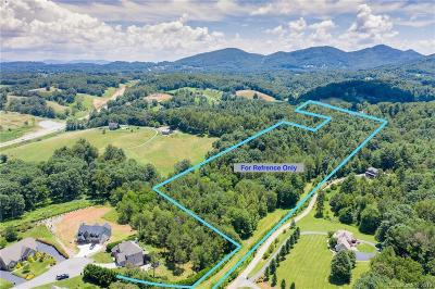 Buncombe County Residential Lots & Land For Sale: 9 +/- acres New Leicester Highway