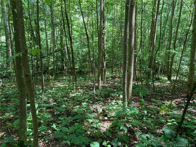 Buncombe County Residential Lots & Land For Sale: 22 Early Spring Way #62,  67