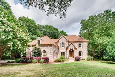 Southpark Single Family Home For Sale: 10003 Standing Stone Court