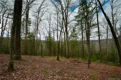 Buncombe County Residential Lots & Land For Sale: 36 Dividing Ridge Trail #005