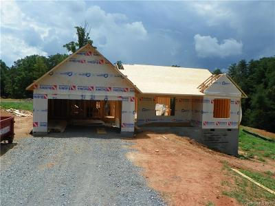 Buncombe County Single Family Home For Sale: 65 Curtis Miles Road
