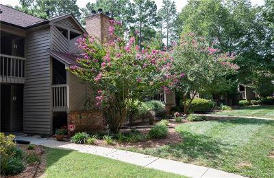 Clover, Lake Wylie Condo/Townhouse For Sale: 4160 Charlotte Highway #F