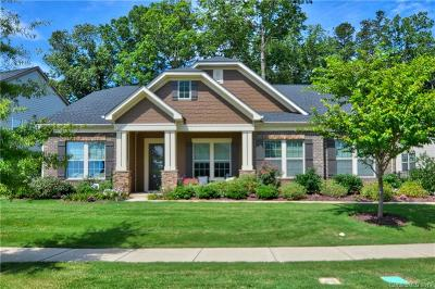 Mecklenburg County Single Family Home For Sale: 7724 Coalcliff Drive