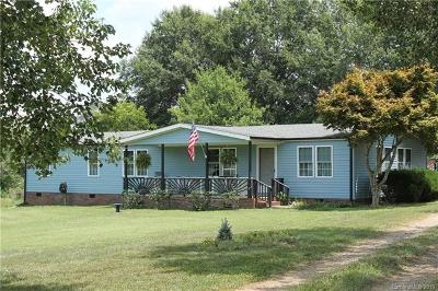 Statesville Single Family Home For Sale: 599 E Lewis Ferry Road