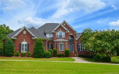 Gaston County Single Family Home For Sale: 5053 Stone Ridge Drive