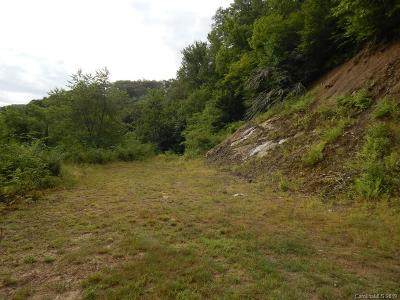Haywood County Residential Lots & Land For Sale: Spruce Flats Road #2