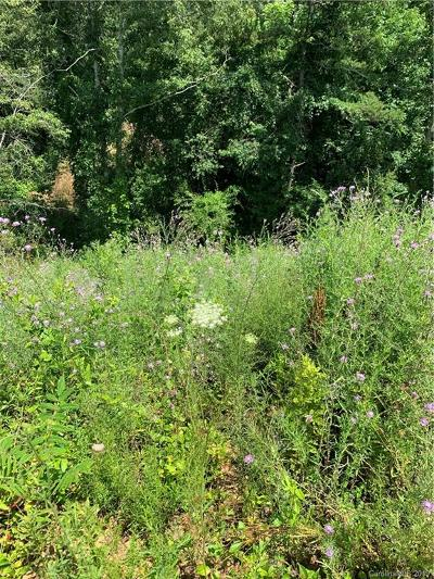 Buncombe County Residential Lots & Land For Sale: 49 Alexander Ridge Drive