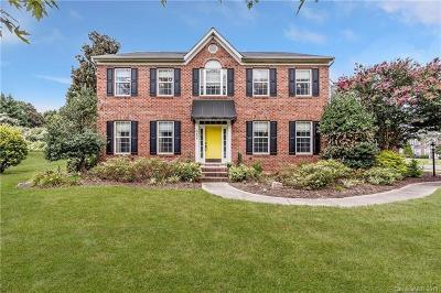 Mint Hill Single Family Home For Sale: 10608 Olde Irongate Lane