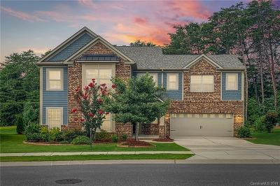 Fort Mill Single Family Home For Sale: 517 Brookhaven Drive