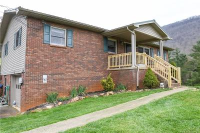 Haywood County Single Family Home For Sale: 44 Hawk Haven Cove