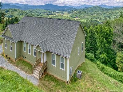 Haywood County Single Family Home For Sale: 625 Trials Gap Drive
