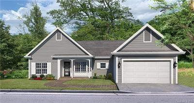 Weaverville Single Family Home For Sale: 183 Jupiter Road #9