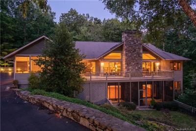 Hendersonville Single Family Home For Sale: 117 Little Cherokee Ridge
