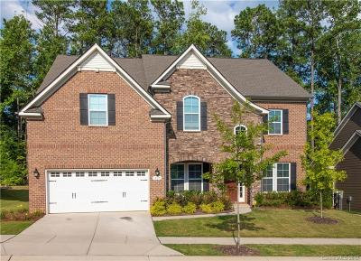 Fort Mill Single Family Home For Sale: 1428 Afton Way