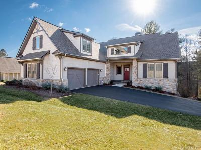 Buncombe County Single Family Home For Sale: 109 Orvis Stone Circle