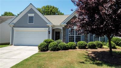 Cabarrus County, Iredell County, Mecklenburg County, Rowan County, Stanly County Single Family Home For Sale: 8722 Heron Glen Drive